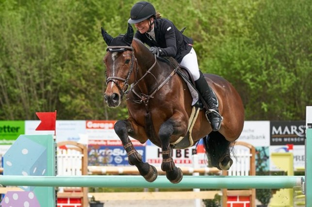 Horse at jumping course